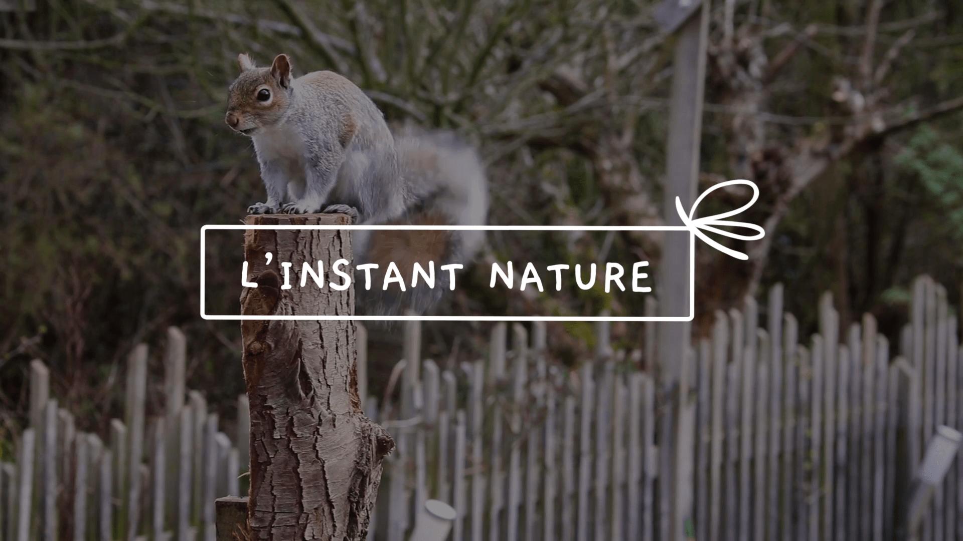 L'instant nature